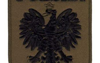 Sprawa haftowanej naszywki z czarnym orłem